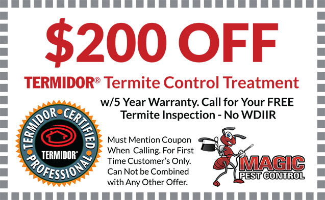 Termite Control Treatment- Coupon