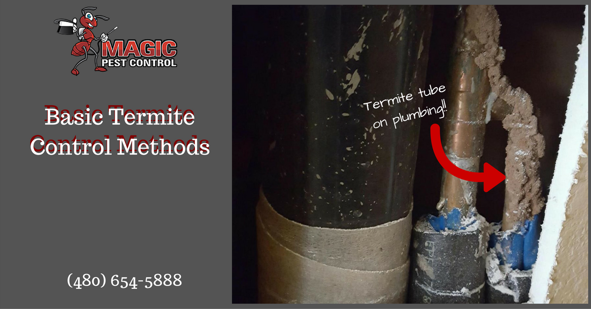 Basic Termite Control Methods