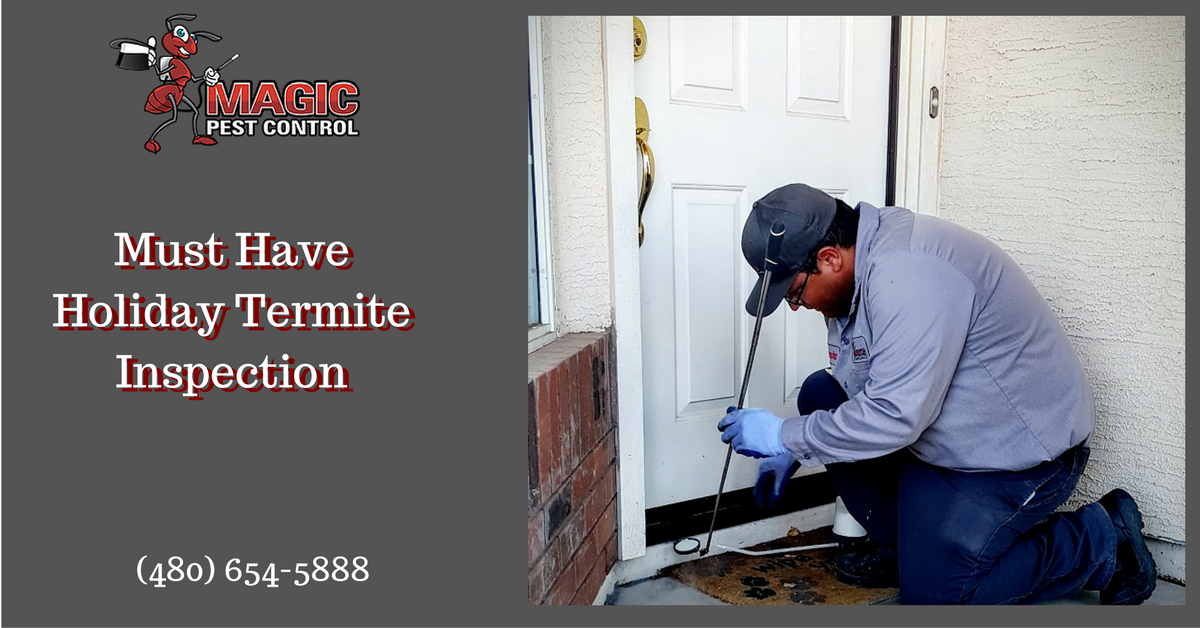 must-have-holiday-termite-inspection